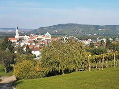 Unweit von Wien liegt das Augustinerstift Klosterneuburg und thront stolz über dem gleichnamigen Städtchen und den umliegenden Weinhängen.     Das imposante Dolores Park, Travel, Oktoberfest, Wine, Places, Art, Pride, Trips, Viajes