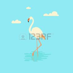 cartoon flamingo: illustration of a white flamingo standing in water on one leg. Exotic bird made in flat style. Flat flamingo bird symbol. Flamingo icon. Flamingo silhouette isolated on blue background.