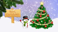 560 Tapety świąteczne I Okolicznościowe Boże Narodzenie Tapeciarnia Pl Ideas Boże Narodzenie Tapety Tapeta
