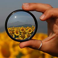 10 Unique Examples of Magnifying Glass Photography