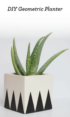 How to Make a Geometric Planter - love this!