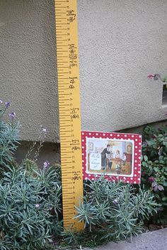 Mary Poppins' measuring stick
