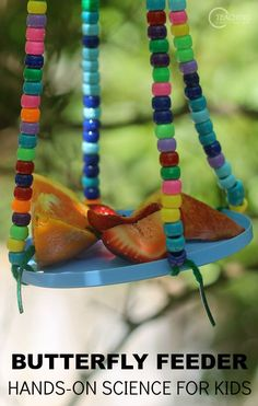 After reading the book 100 Backyard Activities That Are the Dirtiest, Coolest, Creepy-Crawliest Ever!, our preschoolers made this easy butterfly feeder for an outdoor science activity.