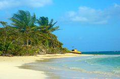 Explore Puerto Rico's best-kept secret – the island of Culebra, a pristine eco destination. It's a n... - Photo Modified: Flickr / Jirka Matousek / CC BY 4.0