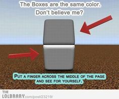 Optical Illusion are always fun to watch. Many of the optical Illusions will twist our mind. Here are few of such optical Illusions to twist your mind. Eye Tricks, Brain Tricks, Mind Tricks, Illusions Mind, Amazing Optical Illusions, Art Optical, Optical Illusions Brain Teasers, Funny Memes, Jokes