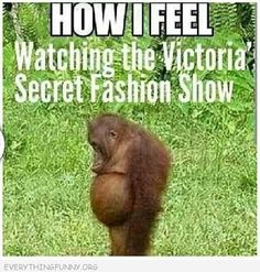Victoria's Secret Fashion Show....how I feel.