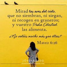 Dios me fortalecerá