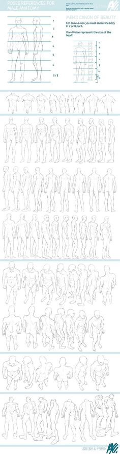 fucktonofanatomyreferences: A glorious fuck-ton of perspective angle references (per request). [From various sources.]