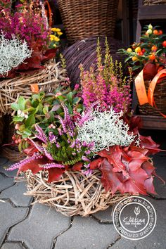 Fall Flowers, Dried Flowers, Fall Containers, Behind The Glass, Simple Elegance, Grapevine Wreath, Grape Vines, Container Gardening, Flower Pots