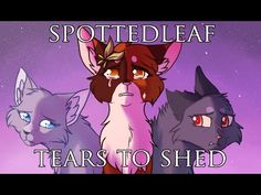 SPOTTEDLEAF MAP - Tears to Shed - YouTube (hosted by Princess-Anna) [Warriors Cats MAP]