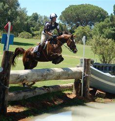 Concurso completo de equitación ( CCE )