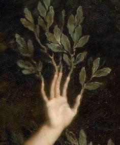 Extract from Apollo chasing Daphne, by René-Antoine Houasse, Regram … - Art Painting Aesthetic Art, Aesthetic Pictures, Aesthetic Painting, Aesthetic Outfit, Aesthetic Drawing, Aesthetic Clothes, Apollo Aesthetic, Renaissance Kunst, Arte Obscura