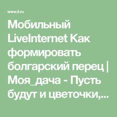 Мобильный LiveInternet Как формировать болгарский перец | Моя_дача - Пусть будут и цветочки, и ягодки! |