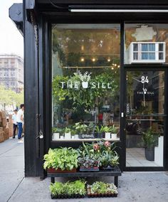 We're besotted with this quirky little potting shop in New York City. Known for a gigantic range of planters and a knack for 'potting design,' The Sill has become something of a sensation among New York's window and balcony gardeners. One of their specialties is teensy-tiny potted succulents that can fit onto even the smallest of window sills. See examples of their work above, and you can find them on Instagram as well.