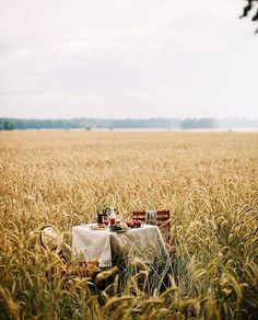Picnic in the fields? Vie Simple, Fields Of Gold, Photo Images, Picnic Time, Pics Art, Country Life, Country Kitchen, Farm Life, Belle Photo