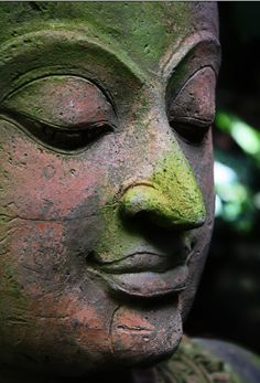 serene statue with moss (Thailand)
