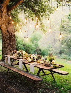Trees, wooden tables, lights, white napkins, plants and white flowers