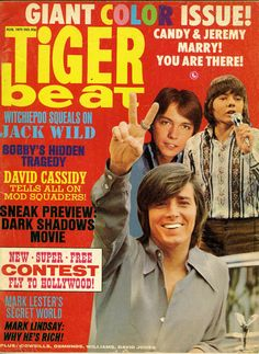 Tiger Beat - David Cassidy, Bobby Sherman, Jack Wild - swoon