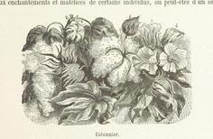 Image taken from page 145 of 'La Perse. Géographie, histoire, mœurs, gouvernement. Orné de ... gravures'   Flickr - Photo Sharing!