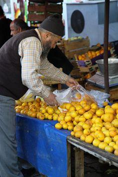 Picking Lemons . Turkey