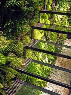 A glass staircase and living wall in Patrick Veillet's Paris studio. Designed by Vertical Garden's Patrick Blanc. Vertical Garden Wall, Vertical Gardens, Patio Interior, Interior And Exterior, Interior Design, Landscape Architecture, Landscape Design, Green Architecture, Garden Design
