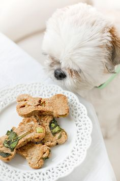 Spinach Green Apple Biscuits for Dogs - a Grain Free Recipe