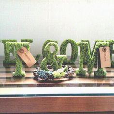 イニシャルモス5文字 Wedding Signs, Our Wedding, Wedding Ideas, Wedding Initials, Photo Props, Flower Arrangements, Wedding Decorations, Place Card Holders, Display