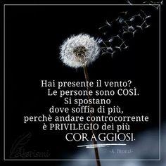 Buon giorno... - Patrizia Petritola - Google+
