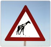 "Please don't spread the Facebook ""giraffe picture"" hoax! 