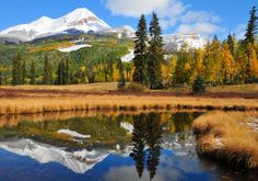 Autumn in the southwest US - Google Search