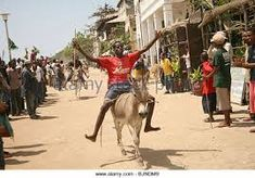 Image result for donkey race Donkey, Street View, Racing, Image, Running, Donkeys, Auto Racing