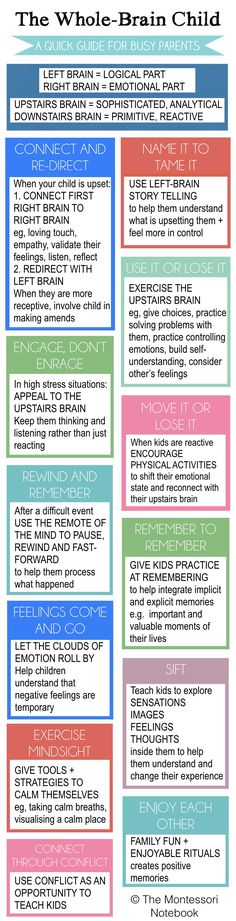 Summary of The Whole-Brain Child - an essential infographic to help you put into practice the 12 strategies from Dan Siegel best seller The Whole-Brain Child - Great Parenting Today Whole Brain Child, Whole Brain Teaching, Teaching Kids, Parenting Advice, Kids And Parenting, Parenting Styles, Practical Parenting, Parenting Classes, Peaceful Parenting