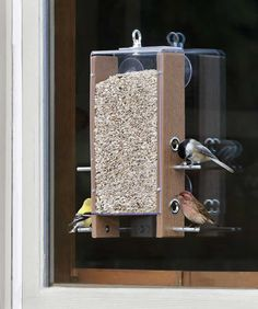 14 Best Comcast Caresday Bird Feeder Images Bird Feeders Teacup