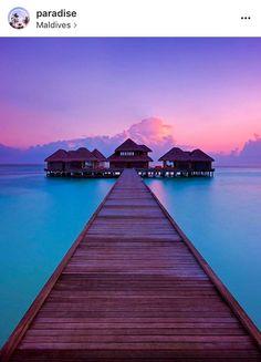 The enchanting Maldives! Maldives travel, Maldives photography, amazing travel destinations.