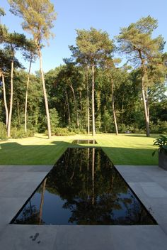 Terrace Garden, Garden Pool, Water Garden, Garden Paths, Backyard Pool Designs, Swimming Pool Designs, Outdoor Landscaping, Outdoor Gardens, Amazing Gardens