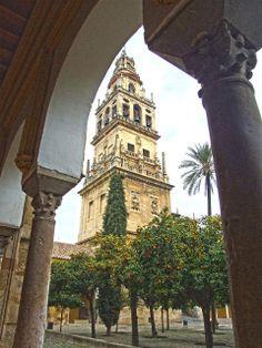 Córdoba - Torre de la Catedral desde el Patio de los Naranjos.