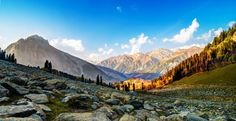 Visit #Sonmarg - The meadow of gold surrounded by snowy mountains against the bright blue skies in Kashmir, India.