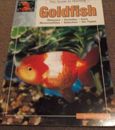The Guide to Owning Goldfish ~ Glass
