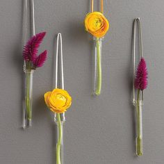 If you don't have room for flowers on a table try hanging  them in these test tube vases