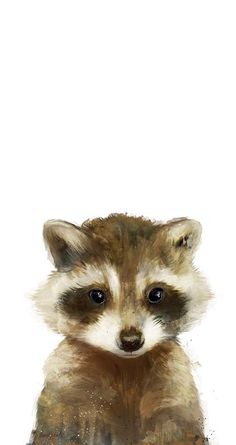 Little Raccoon as Premium Poster by Amy Hamilton . Little Raccoon as Premium Poster by Amy Hamilton Watercolor Animals, Watercolor Paintings, Watercolour, Raccoon Art, Racoon, Baby Raccoon, Raccoon Drawing, Framed Art Prints, Canvas Prints