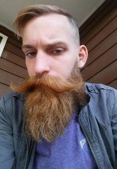 Hair cut and beard trim Moustache En Crocs, Walrus Mustache, Beard No Mustache, Big Moustache, Beard Boy, Red Beard, Trimmed Beard Styles, Hipster Hairstyles Men, Handlebar Mustache