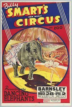 Circus Poster Circus Circus, Circus Theme, Vintage Circus Posters, Amusement Parks, Carnivals, Vintage Comics, Sideshow, Ephemera, Elephant