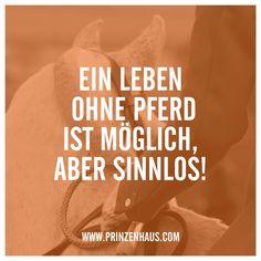 www.prinzenhaus.com Ein Leben ohne Pferd ist möglich, aber sinnlos