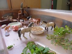 Use large tray or rectangular container & set up the small world play farm! put in a water tray, feeding area using herbs from the garden and bird seed and small world logs for building. It's a great way for the kids to interact with the animals and come and go as they please.