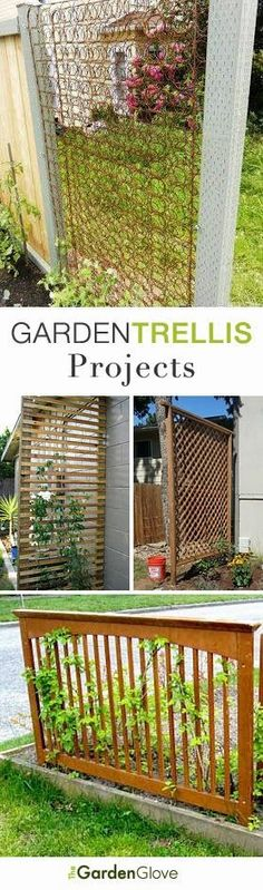 DIY Garden Trellis Project