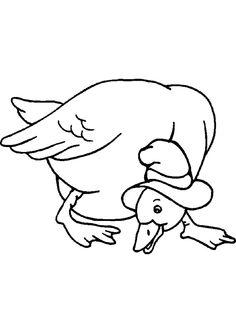 A colorier, dessin d'un canard fermier