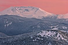 'Mount St Helens in evening alpenglow' by Ed Book on artflakes.com as poster or art print $18.03