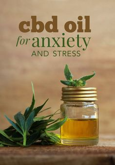 Do you have anxiety that you try to manage with medication or naturally? Here are some great reasons to try using CBD oil for anxiety and stress. remedies for anxiety remedies for sleep remedies high blood pressure remedies simple remedies sinus infection Anxiety Relief, Stress And Anxiety, Health Anxiety, Anxiety Help, Social Anxiety, Pain Relief, Chronic Pain, Mental Health, Recipes