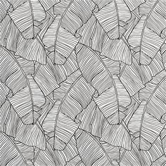 "palm black and white self-adhesive wallpaper | CB2 - 20.5"" x 33' - $99.95 (less 15% is $84.95) - another idea for the inside of the cabinet doors"