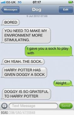Harry Potter Has Given Doggy A Sock.